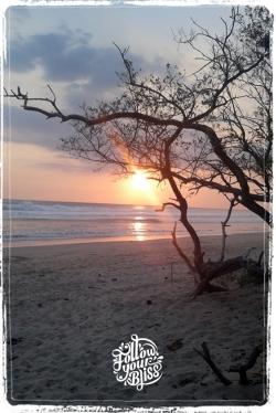 Follow your Bliss - sunset